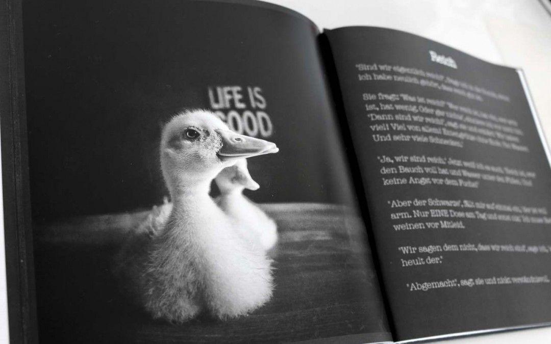 Entengrütze – Fotobuch